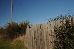 Fence Pt Petre #2143