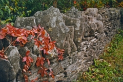 Fence-Rock-from-book-3678