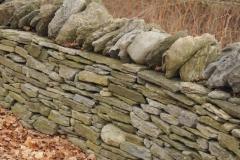 Fence Stone Amherst Island #2506