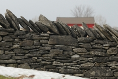 Fence Stone Barn Amherst Island #2505