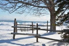 Sandbanks Outlet Fence Winter #3345