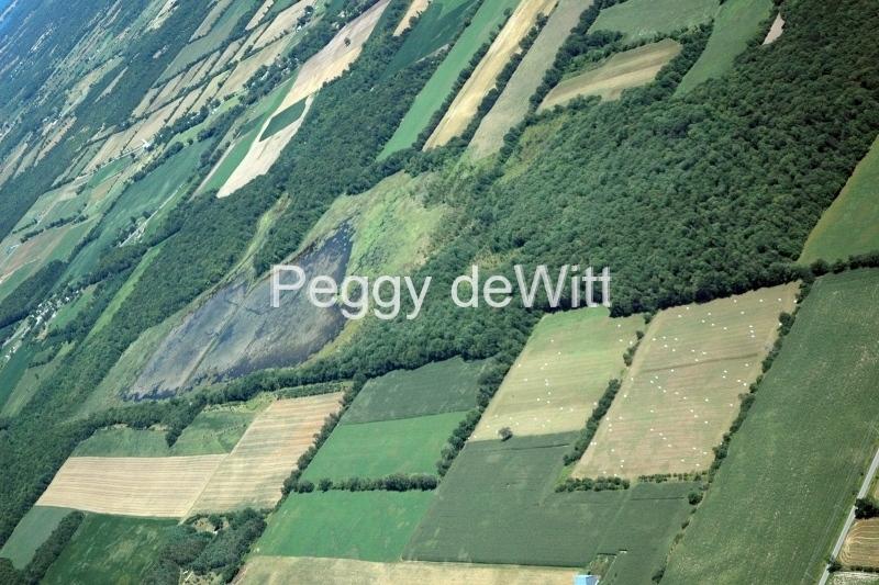 Beaver Meadow Aerial #1099