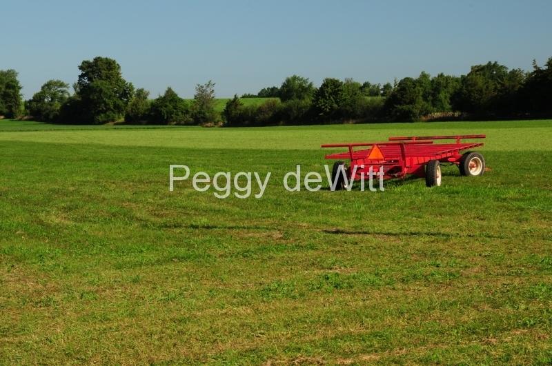 Field Alfalfa Red Wagon #2518