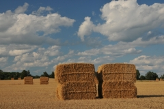 Bales Straw Large #2852
