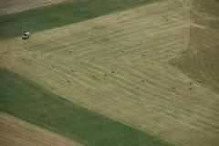 Field Aerial Waupoos #1248
