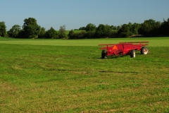 Field Alfalfa Red Wagon #2518