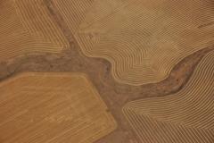 Field Calgary Aerial #1255