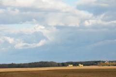 Field Harvesting #2607