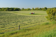 Field Haylage Wagons #1824