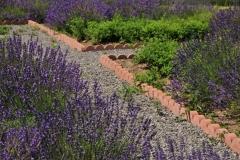 Field Lavendar Bricks Path #3010