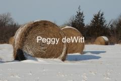 Hay Bales Winter #2171