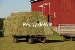 Hay Wagon #1850