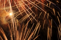 Fireworks 5 #1612
