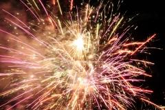 Fireworks Canada Day #2522