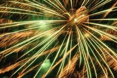 Fireworks Canada Day 6 #1607