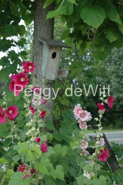 Flowers Hollyhock Birdhouse (v) #2163