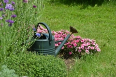 Flowers Watering Can Sally #3245