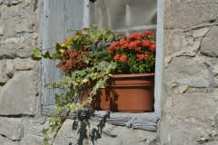 Flowers Window Box Fall #3249