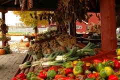 Vegetable Stand Picton 05 (v) #718 Hagerman