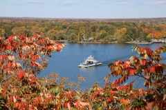 Glenora Ferry Sumac Fall #3260