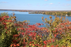 Lake on the Mt View Fall #3279