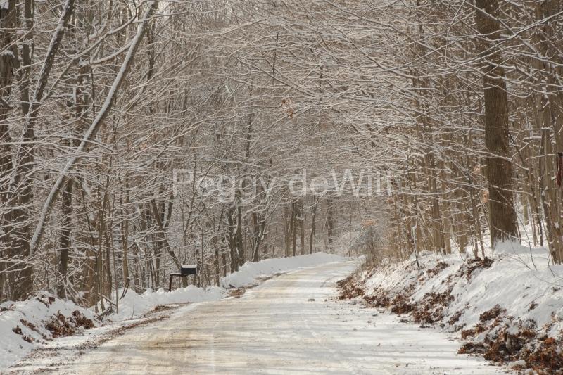 Lane Road Storms Winter #3326