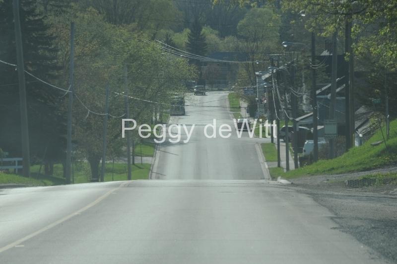 Picton Road #1746