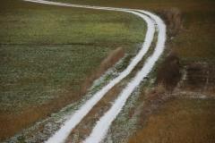 Lane Snowy Bloomfield #1306
