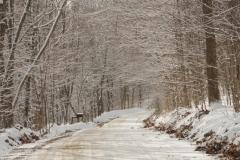Lane Storms Road Winter #2179