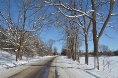 Road Ameliasburgh Winter #3325