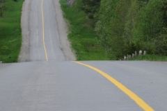 Road Hilly (v) #2413
