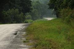 Road Waupoos #1702