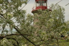 Lighthouse Marine Museum Blossom (v) #1552