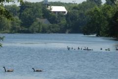Milford Pond (v) #1562