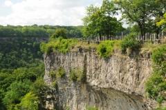 Niagara Glen Nature Area #2238