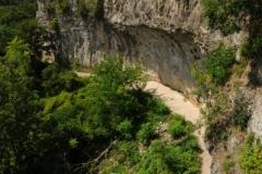 Niagara Glen Nature Area (v) #2240