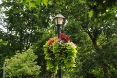 Niagara On The Lake Lamp Post #2239