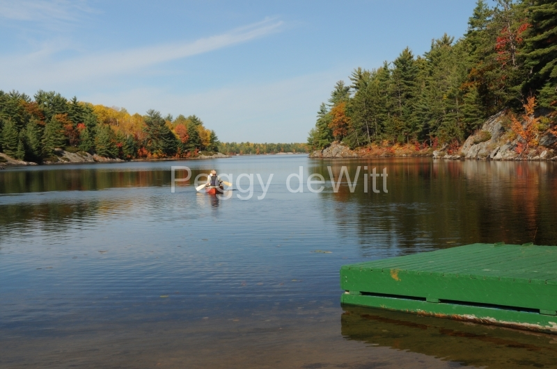 Parry Sound Nine Mile Lake Fall #2636