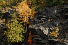 Parry Sound Fall #2627