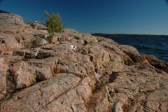 Parry Sound Granite Rock #1246