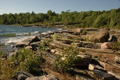 Parry Sound Rocky Shore #1209