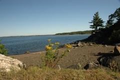 Parry Sound Shore 2 #1222
