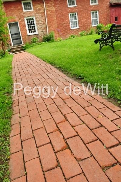 Picton Macaulay House Walkway (v) #2589