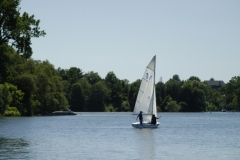 Picton Bay Sailboat #1564