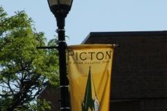 Picton Flag (v) #700