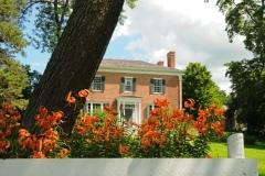 Picton Macaulay House Lilies #1745