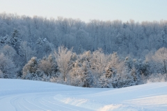 Picton Macaulay Mountain Winter #2280
