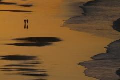 Portugal Praia da Rocha 3 #856
