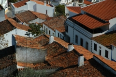 Portugal Roofs #793