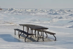 Presquile Picnic Table Winter #3317